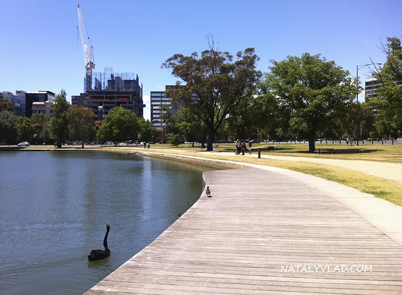 2012-11-18 - Albert Park Lake, Melbourne, Victoria, Australia