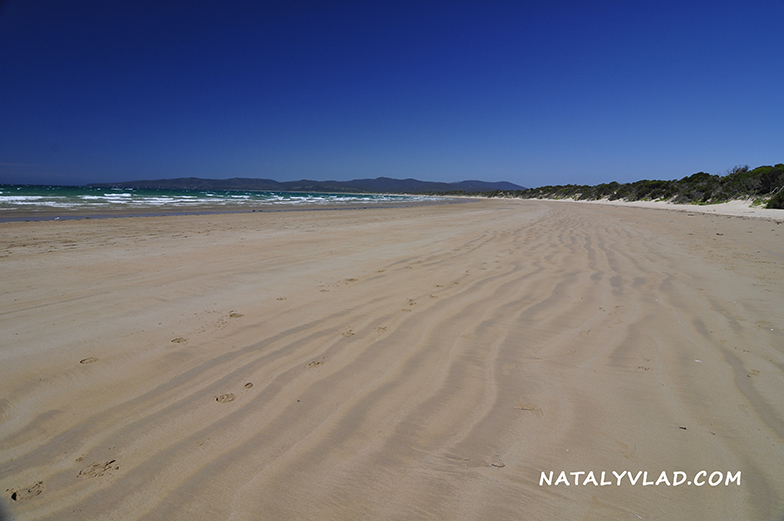 2013-01-05 - Bakers Beach, Narawntapu National Park, Tasmania