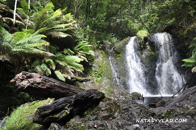 2012-12-28 - Hogarth Falls, Strahan, Tasmania