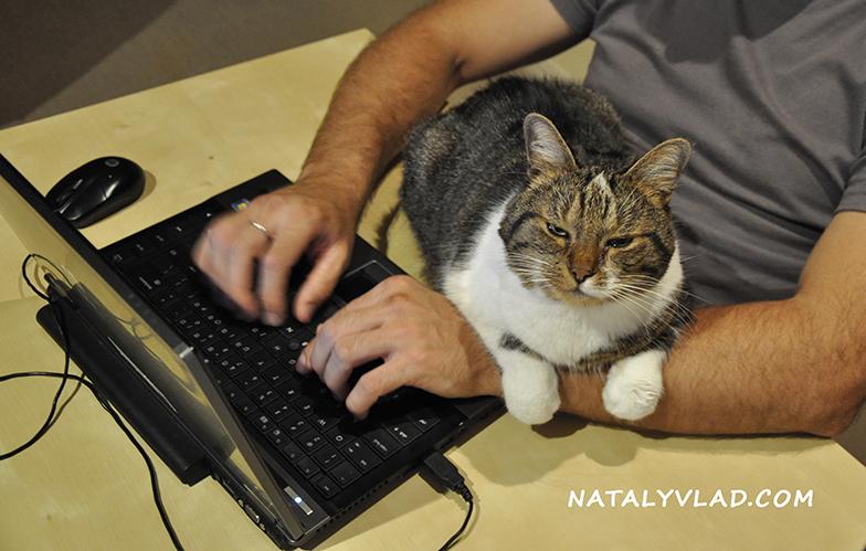 2012-03-26 - Наш кот Тимоха