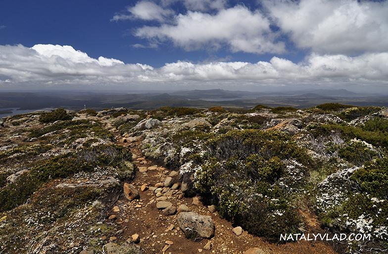 2012-12-29 - Подъем на гору Mt Rufus, Tasmania