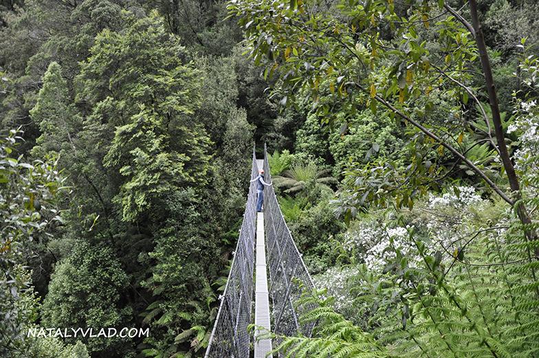 2012-12-27 - Мост рядом с водопадом Montezuma Falls, Тасмания