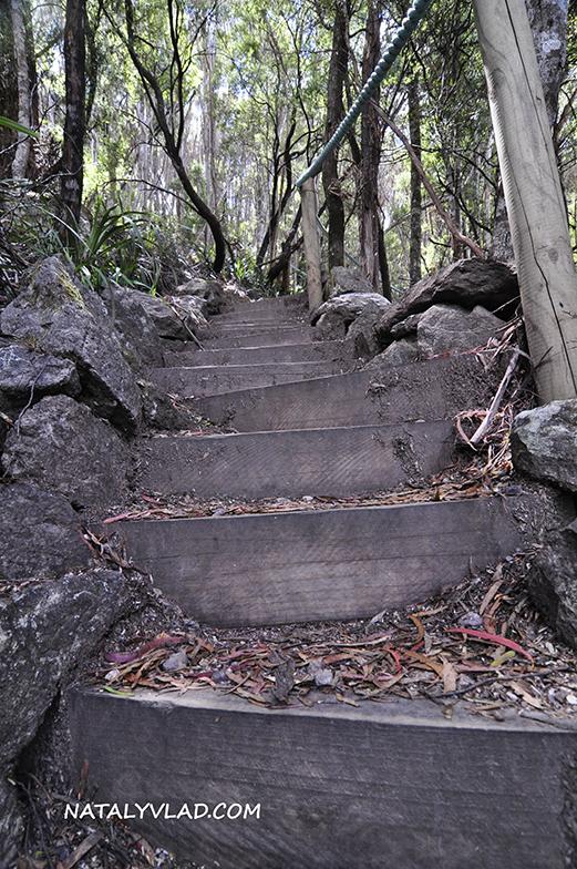 2012-12-25 - Leven Canyon, Tasmania, Australia
