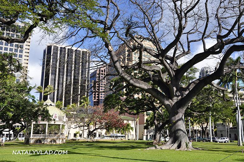 2013-02-05 - Гонолулу, Гавайи, Америка