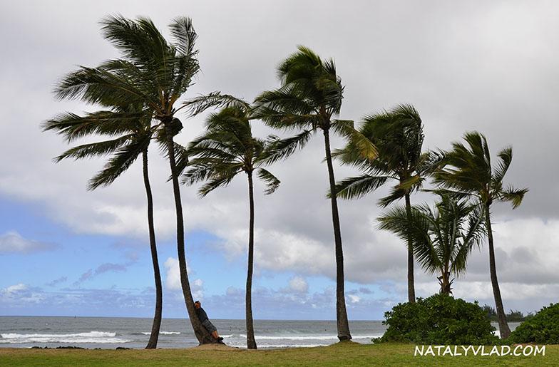 Гавайские острова