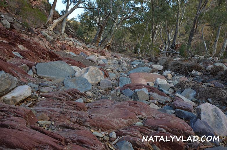 Bunyeroo Gorge, Flinders Ranges, South Australia