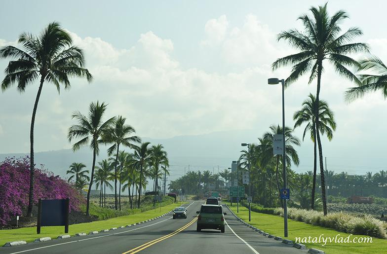 Кона, Большой остров Гавайи