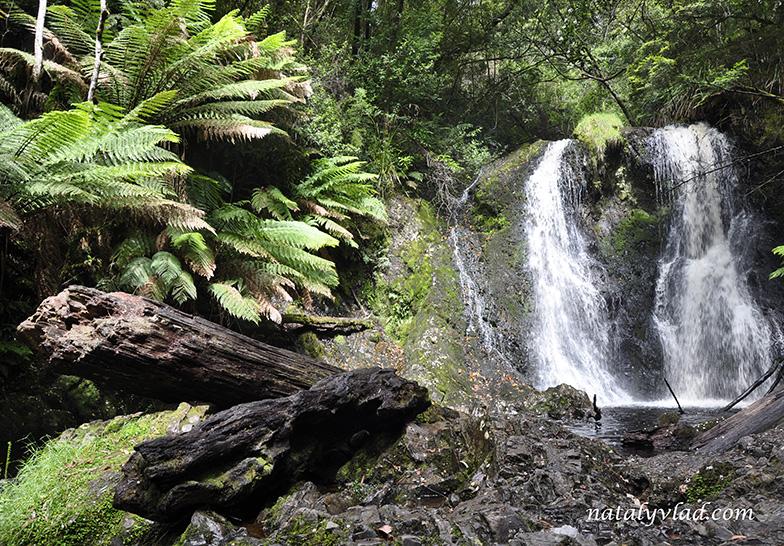 Hogarth Falls, Strahan, Tasmania