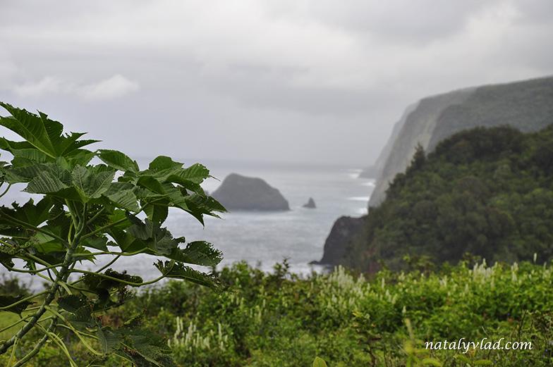 Pololu Valley Lookout, Big Island of Hawaii