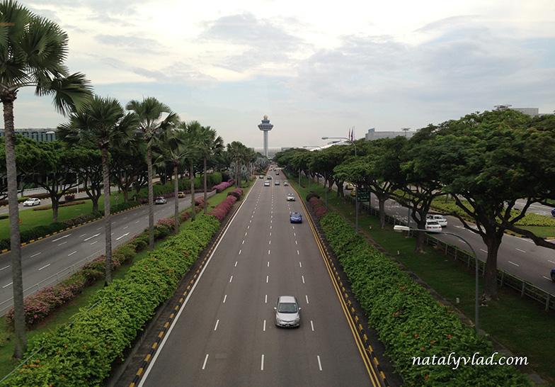 В аэропорту Сингапура