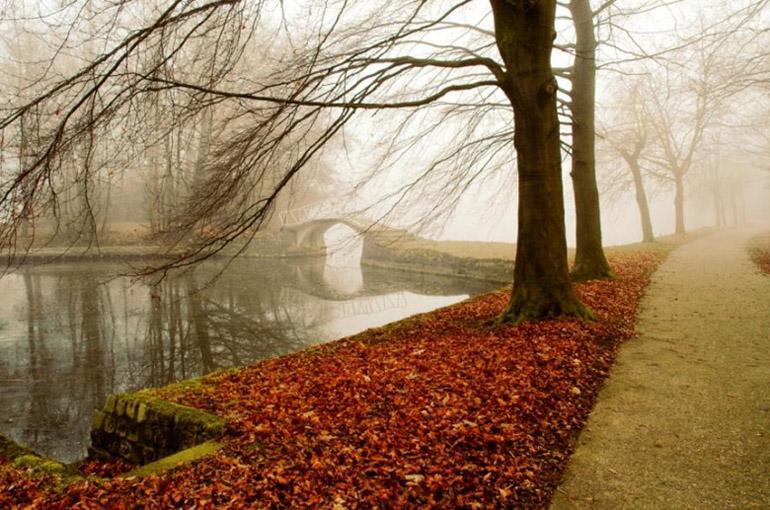 autumn056