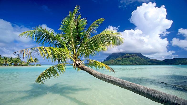 Острова Фиджи | Отдых на Фиджи