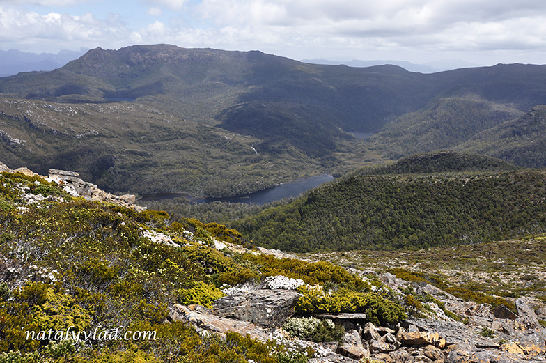Остров Тасмания | Горы Тасмании Mount Rufus