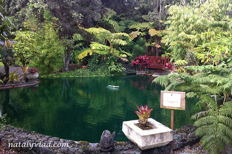 Гавайи Гостиница The Chalet Kilauea Collection