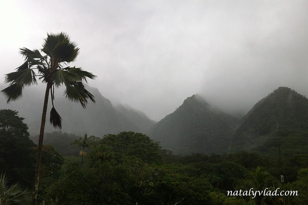 Гавайи Оаху Природа