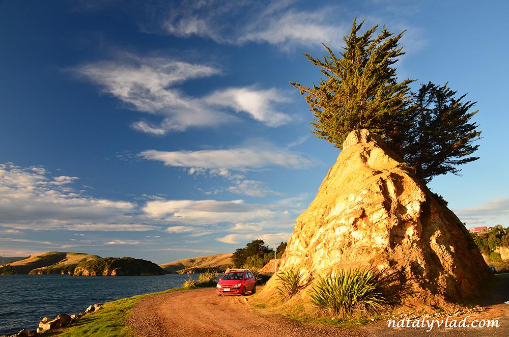 Otago Peninsula Scenic Drive, Dunedin, New Zealand