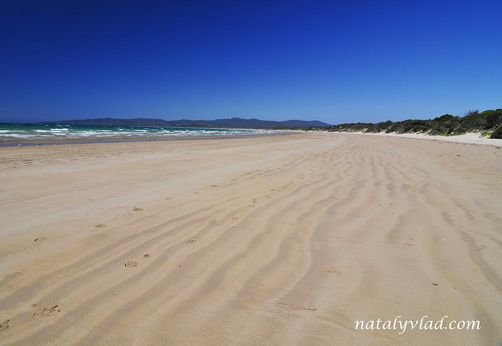 Narawntapu National Park, Tasmania, Australia
