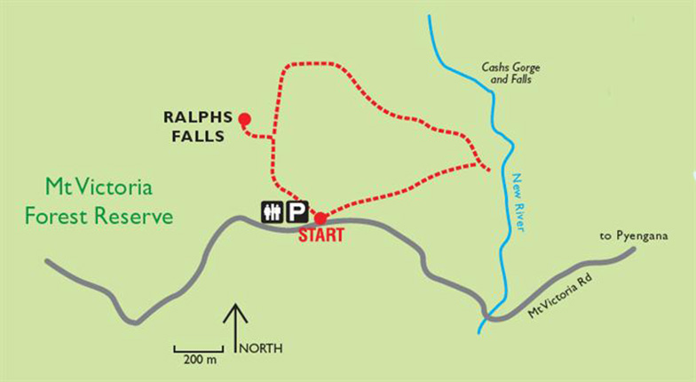 Ralphs Falls and Cash's Gorge Circuit, Tasmania
