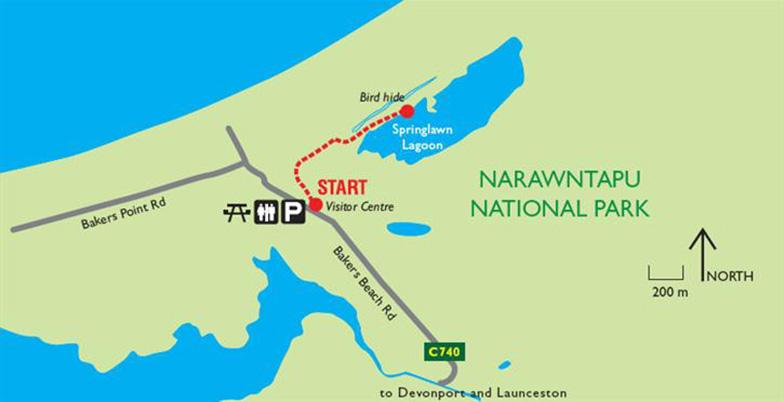 Springlawn Nature Walk, Narawntapu NP, Tasmania