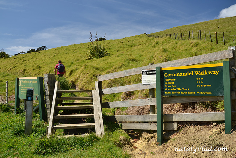 Coromandel Coastal Walkway, New Zealand