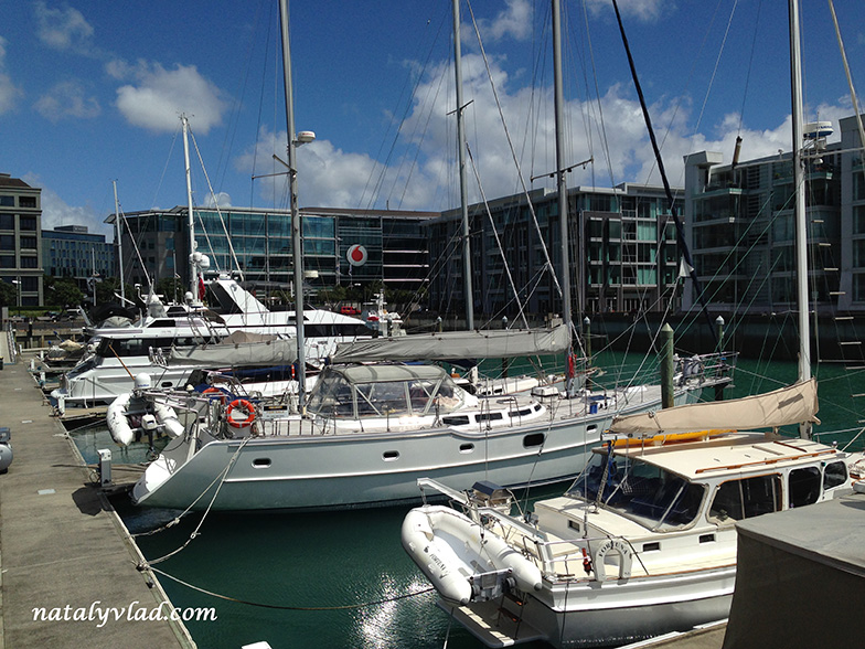 my-one-day-in-new-zealand-photo (27)