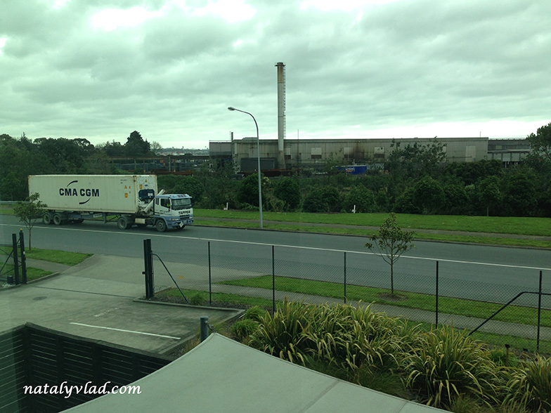 my-one-day-in-new-zealand-photo (29)