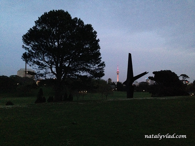 my-one-day-in-new-zealand-photo (6)