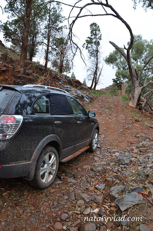 Skytrek 4WD, Willow Springs Station, Flinders Ranges, Australia