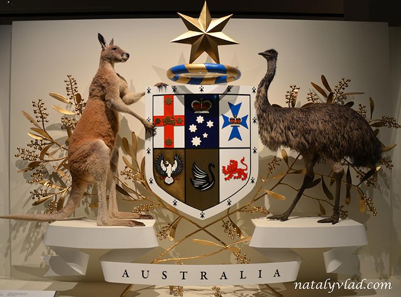 Жизнь в Австралии   Блог Наты и Тёмы