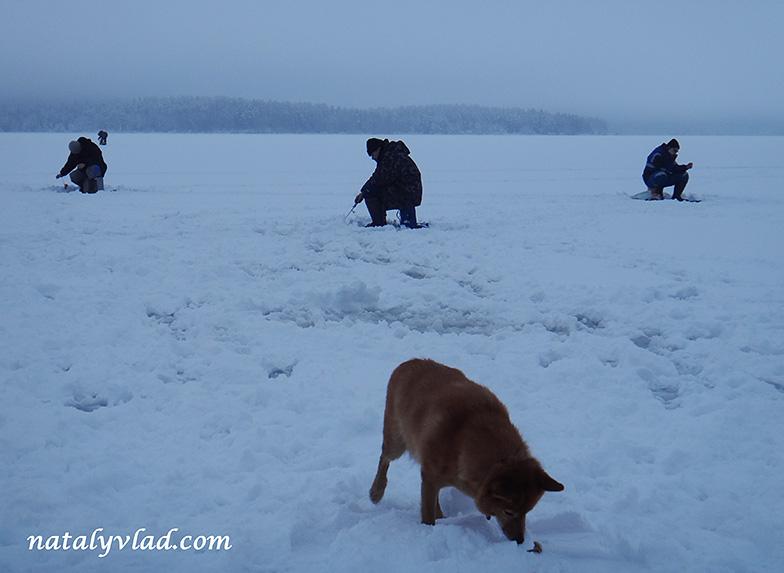 Зимняя рыбалка в России
