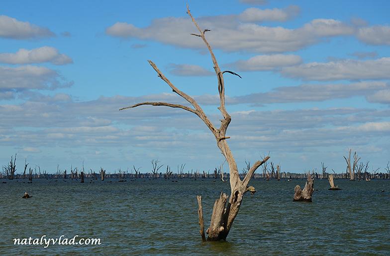 Австралия Озеро Малуола | Блог Наты и Тёмы