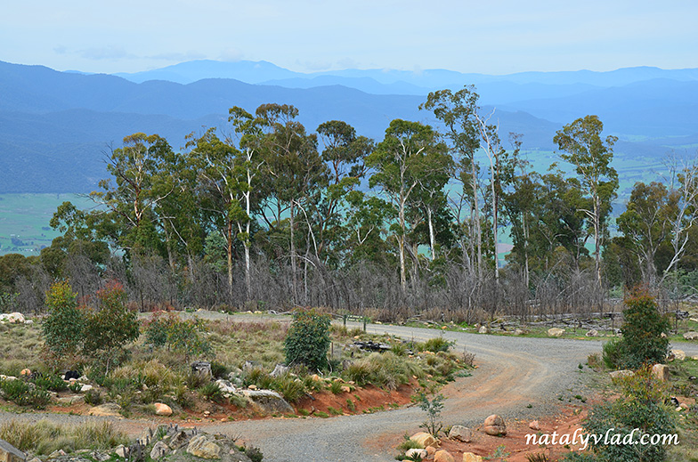 Mount Stanley Australia| Блог Наты и Тёмы