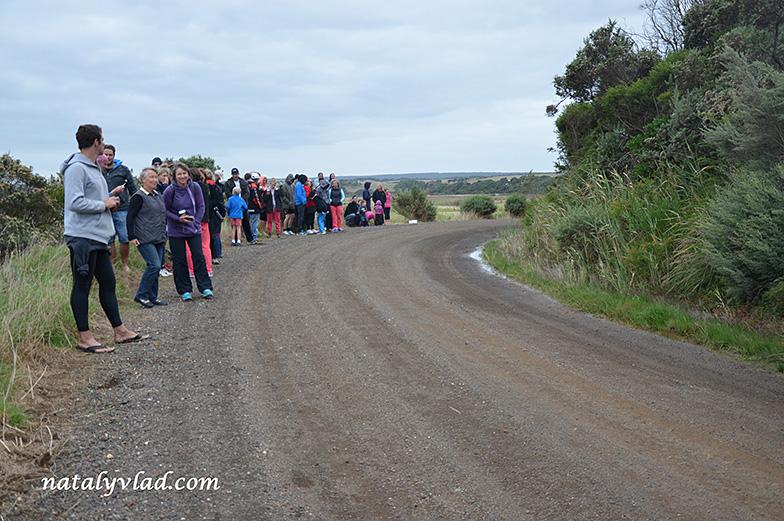 Kangaroobie Klassic 2014 | Блог Наты и Тёмы
