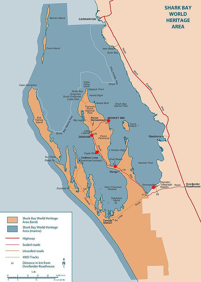 Акулья Бухта Западная Австралия