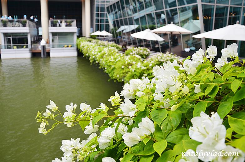 Сингапур фото | Блог Наты и Тёмы
