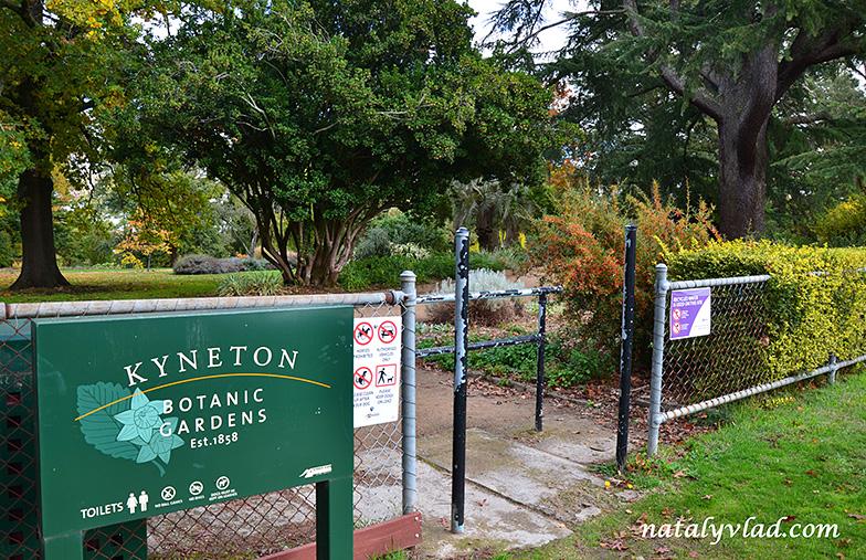 Осень в Австралии фото   Блог Наты и Тёмы