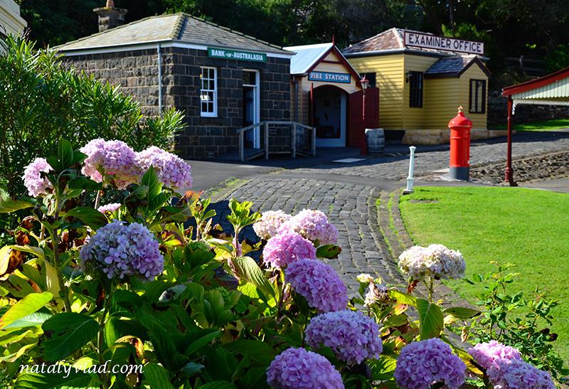 Викторианский дом, Цветы, Брусчатка, Старая Австралия   Блог об Австралии