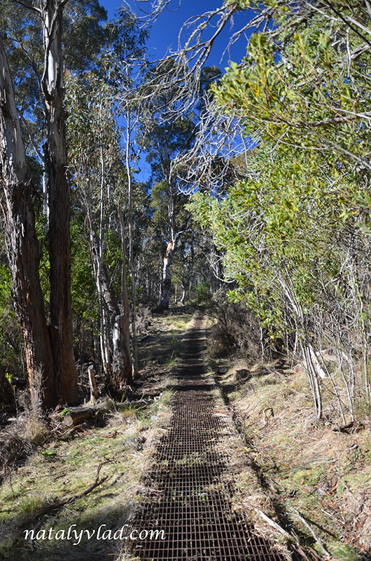 Австралия Намаджи парк Пеший трек Лесная тропа