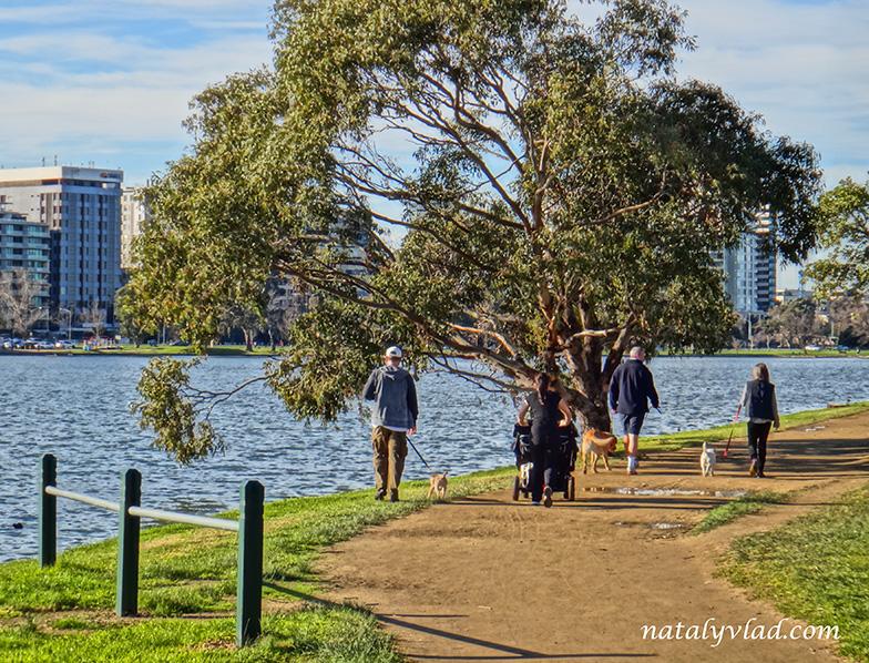 Жизнь русских в Австралии | Мельбурн зима прогулка