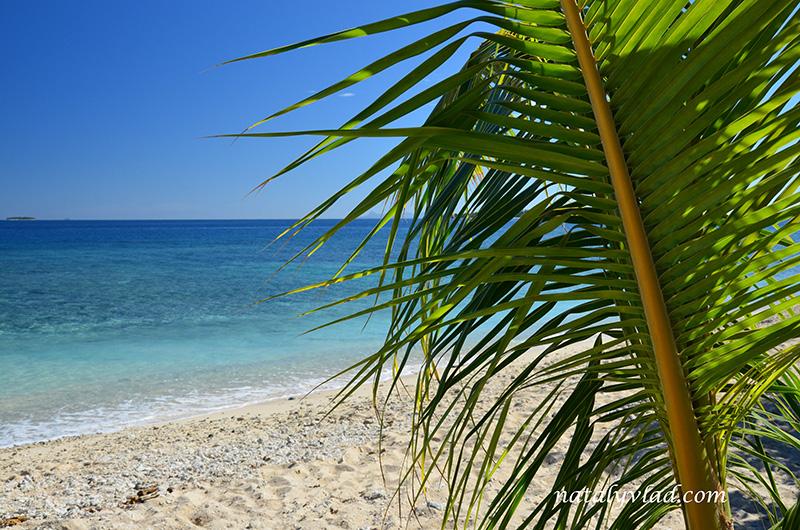 Отдых на островах Фиджи, Пляж пальма море песок кораллы
