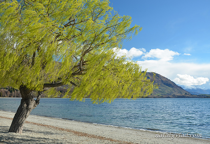 Новая Зеландия отдых Ванака озеро горы