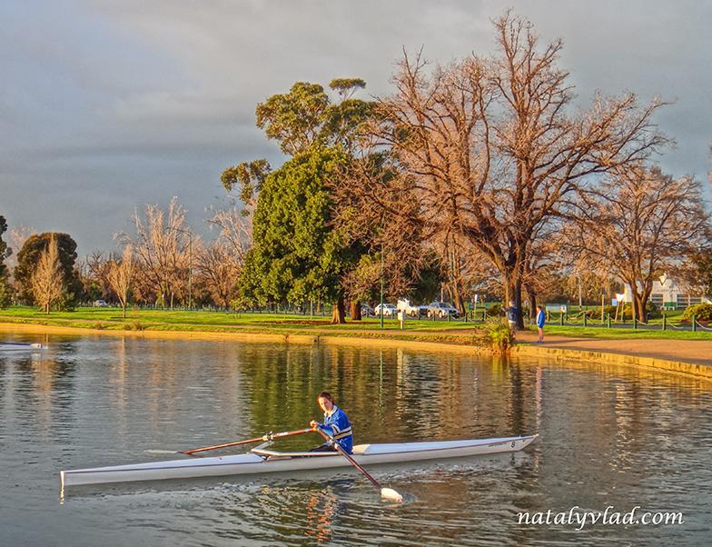 Жизнь в Австралии Блог Альберт Парк Озеро Рассвет Каяк Гребля