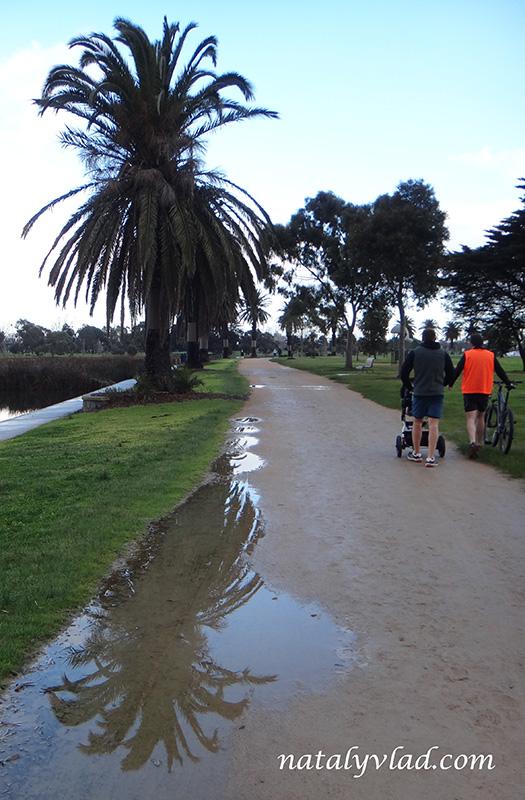 Жизнь в Австралии Блог Альберт Парк Бег с ребенком Park Run
