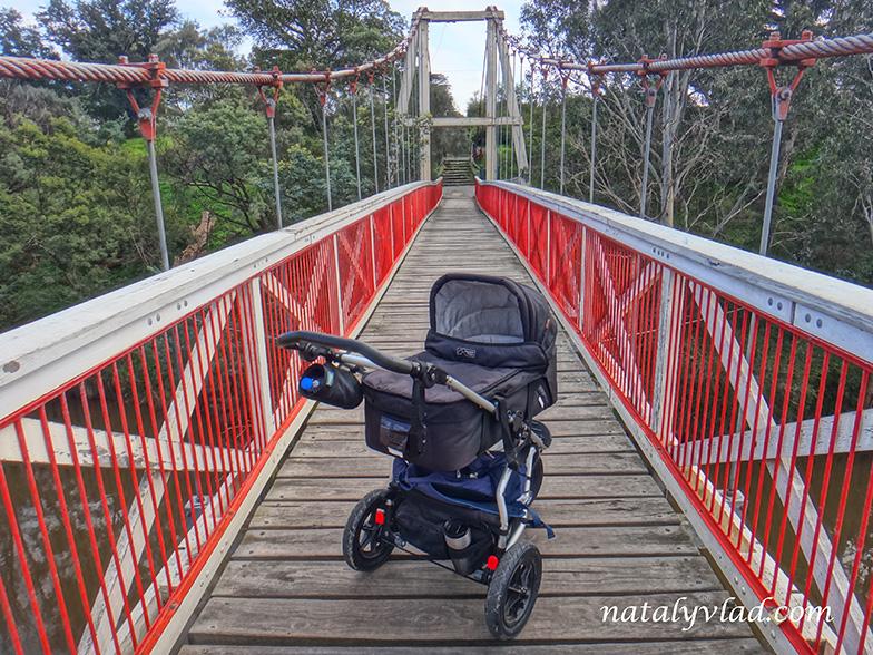 Жизнь русских в Австралии Блог Мельбурн прогулки с ребенком
