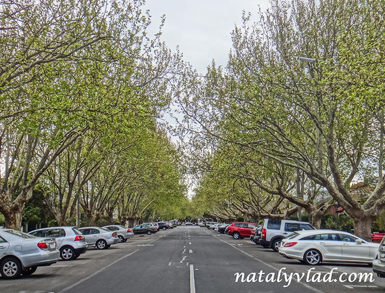Блог о жизни в Австралии Мельбурн Районы Улицы