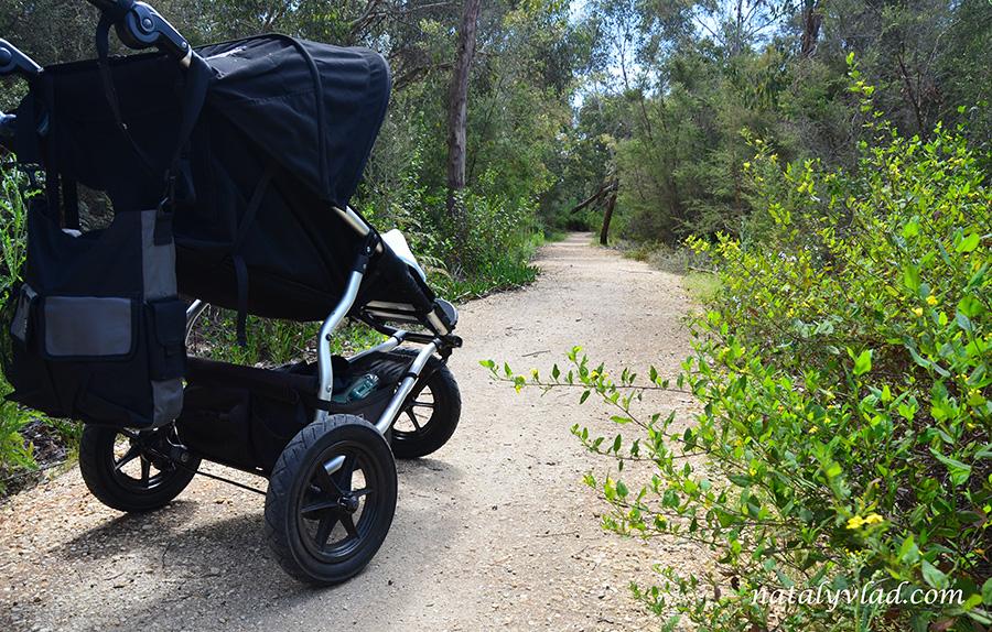 Прогулки с детской коляской в лесной зоне