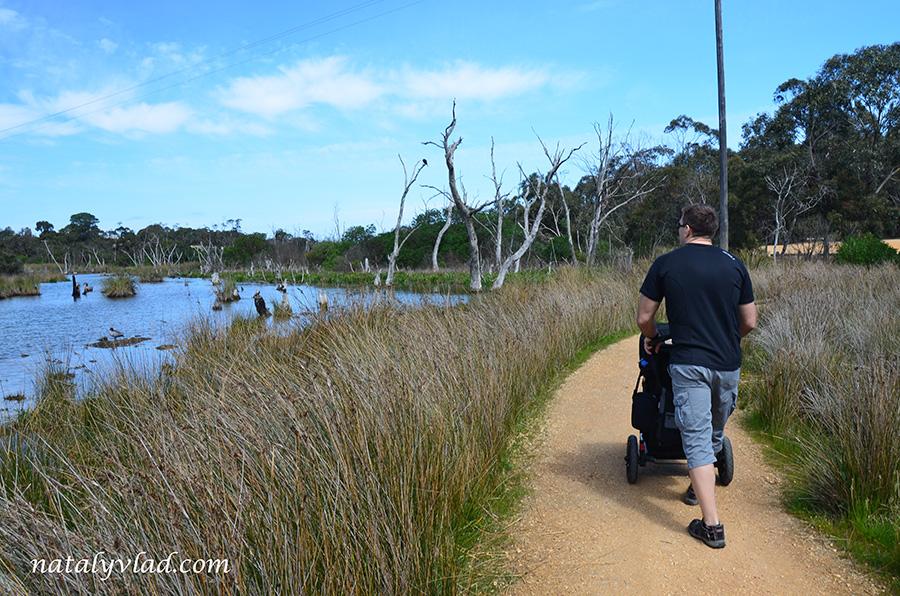Детская коляска на тропинке у берега реки