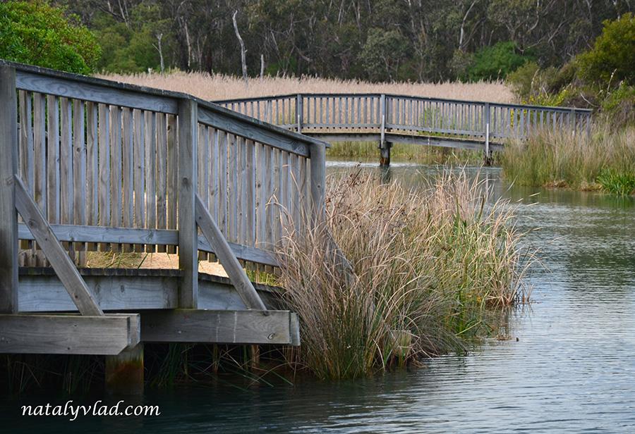 Деревянные мосты через реку