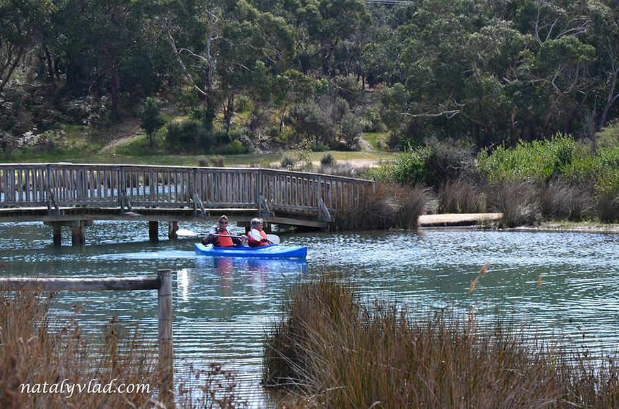 Каякинг на реке в Австралии