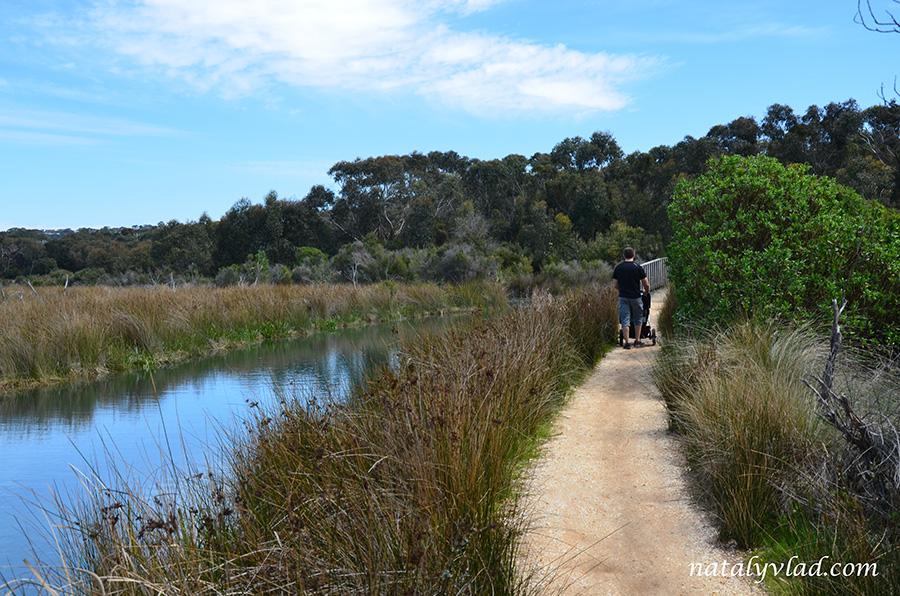 Прогулки вдоль реки с детской коляской